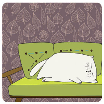 Cat on Green Sofa Square Coaster