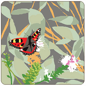 Perkins & Morley Red Admiral Butterfly Wildlife Square Coaster