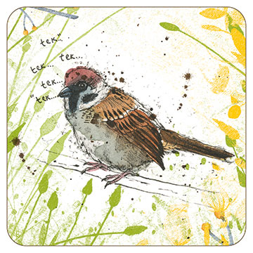 Michelle Campbell Tree Sparrow BG